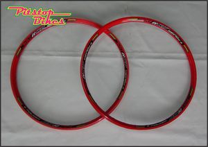 RIMS_FOLKER_AM33_RED